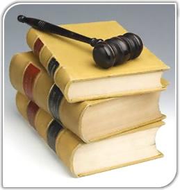 Conozca los proyectos de Ley para 2011