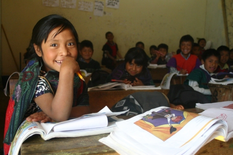 ley de educación indigena